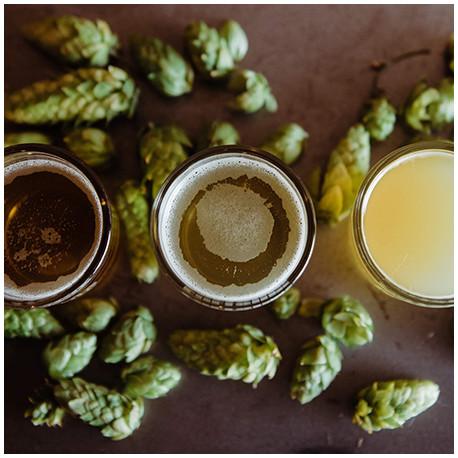 Bière artisanales Lambic - fruitée